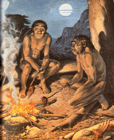 homo-erectus-harnessing-fire