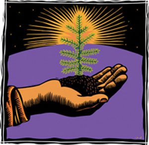 Hand Holding Sapling --- Image by © Images.com/Corbis