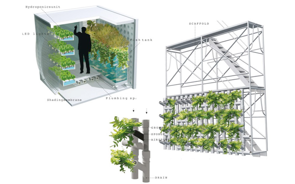 food-growing-cell