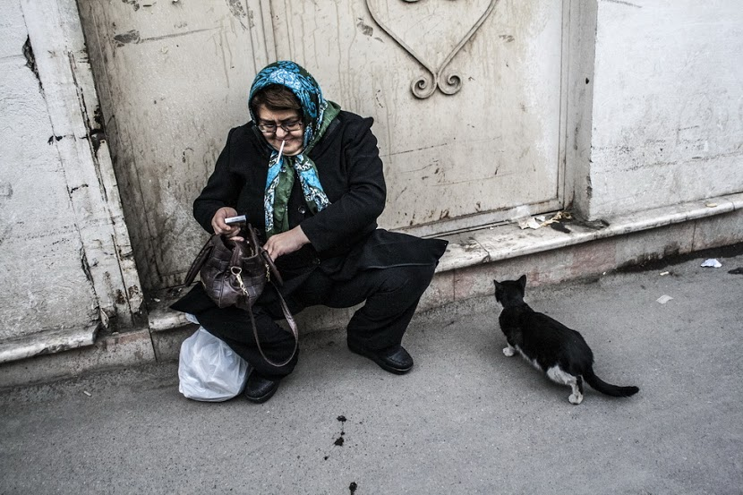 Of Cat and Woman Mohammad Roodgoli