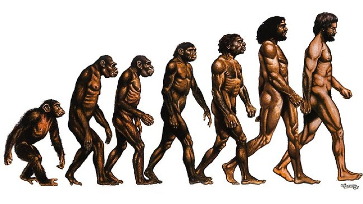 217734-evolution-of-man