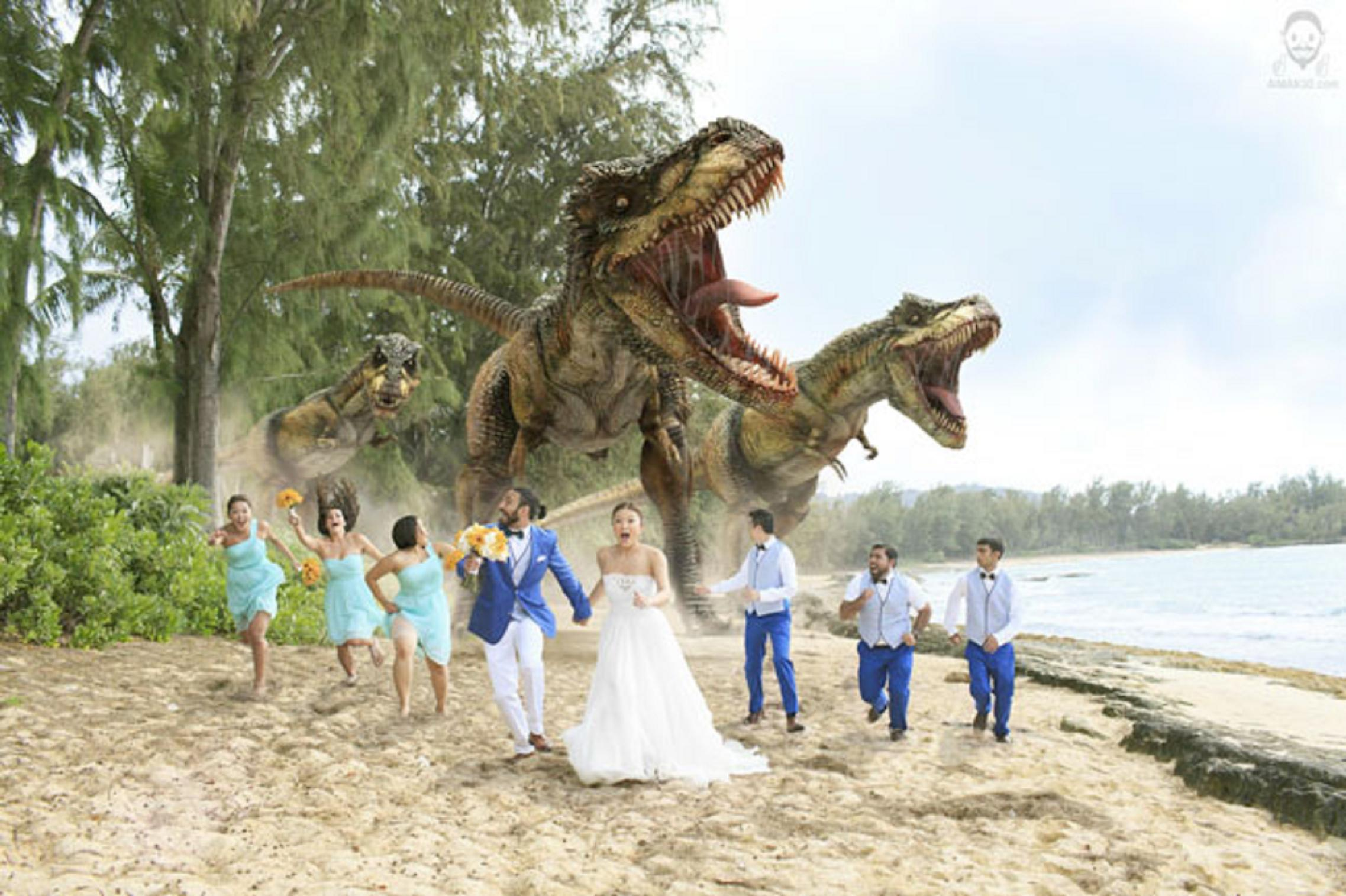 trex-wedding-photo-akhtar