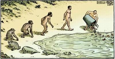 evolution-S