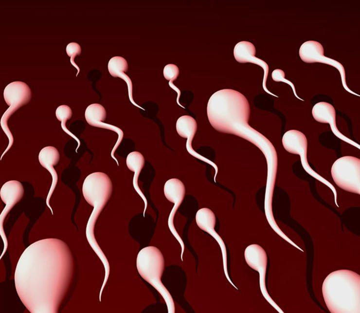 healthy-semen-1
