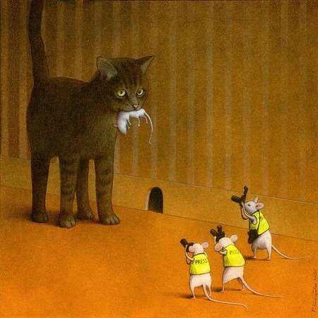 kuczynski poland press mouse cat-M