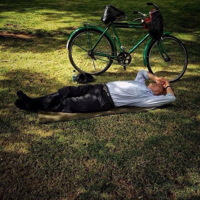 مردی در حال چرت زدن کنار دوچرخهش در پارک قزوین، عکاس مهران مافیبردبار