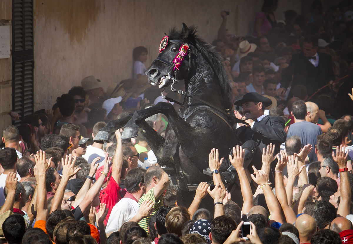 A horse rears in the crowd during the traditional San Juan (Saint John) festival in the town of Ciutadella,